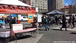 Union Square, Greenmarket, New York City, New York, Manhattan, farmers market, mercato dei contadini