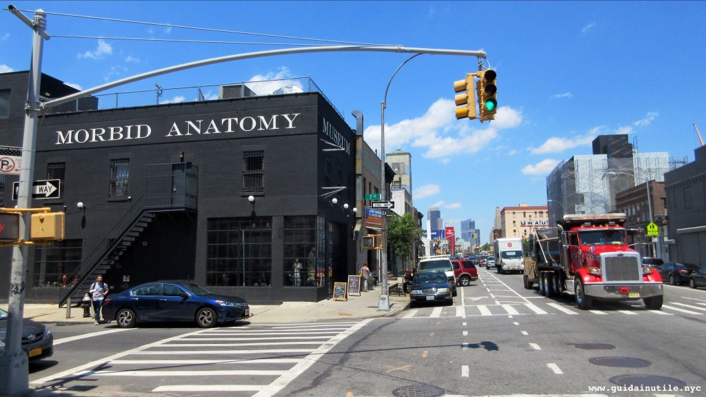 Morbid Anatomy Museum, Gowanus, Brooklyn, New York City, New York