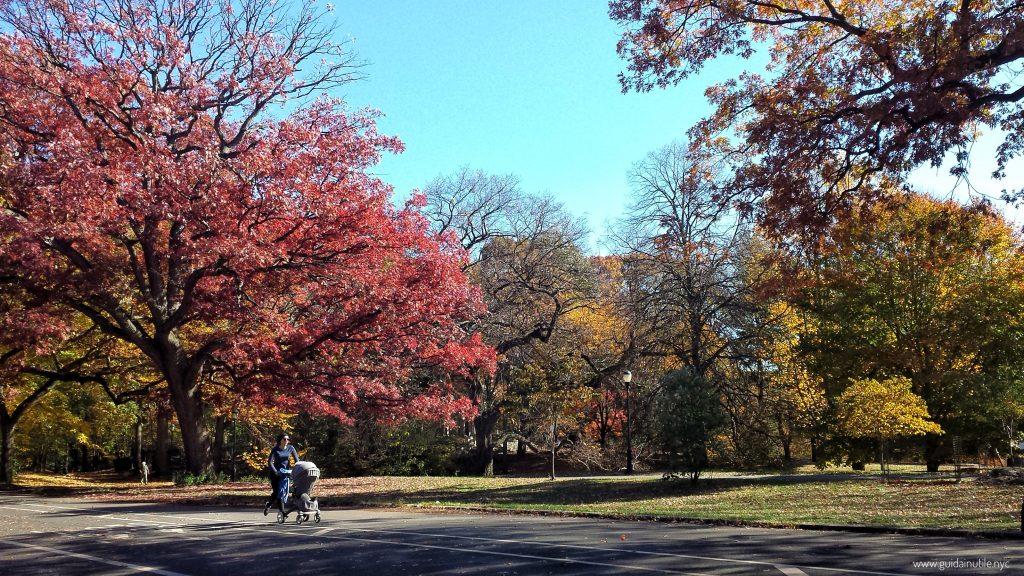 Brooklyn, Prospect Park