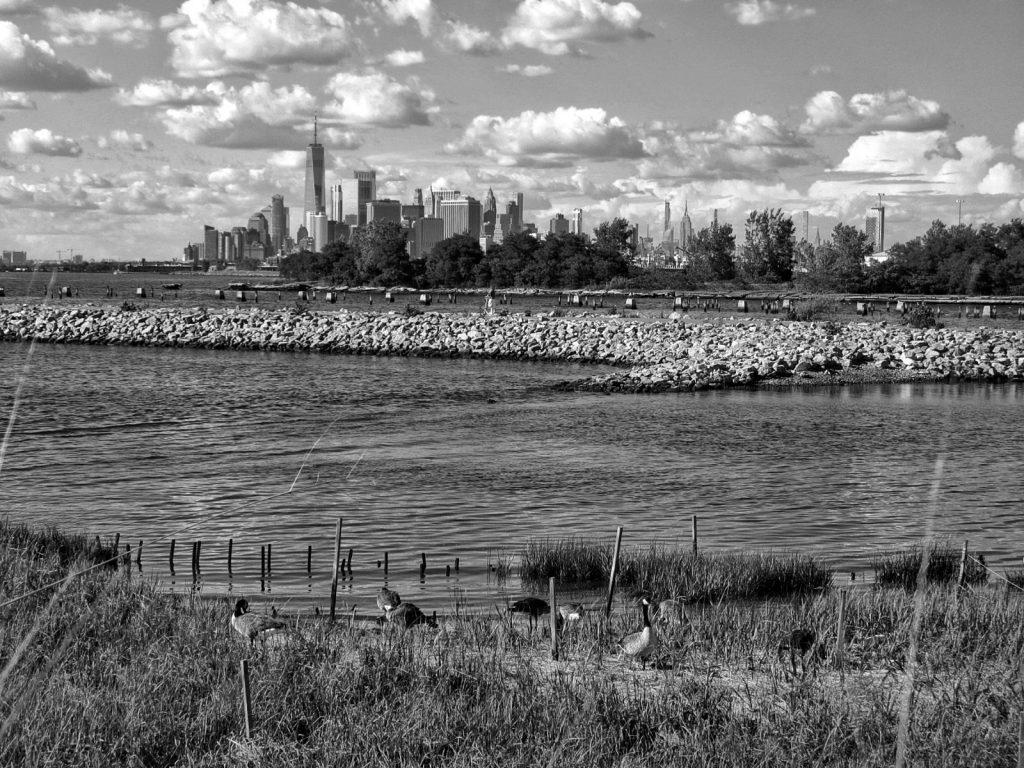 Città di New York vista dal Bush Terminal Park a Brooklyn