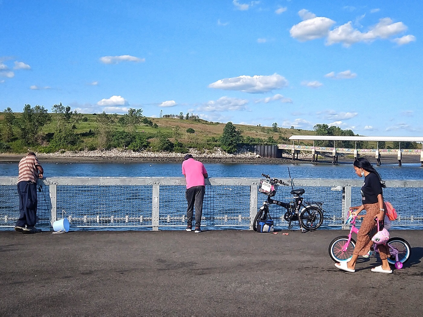 New York, Brooklyn, Shirley Chisolm State Park